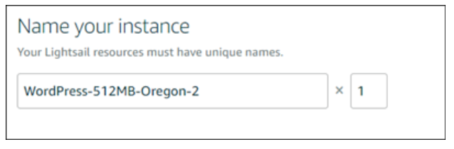 Name-Your-Instance